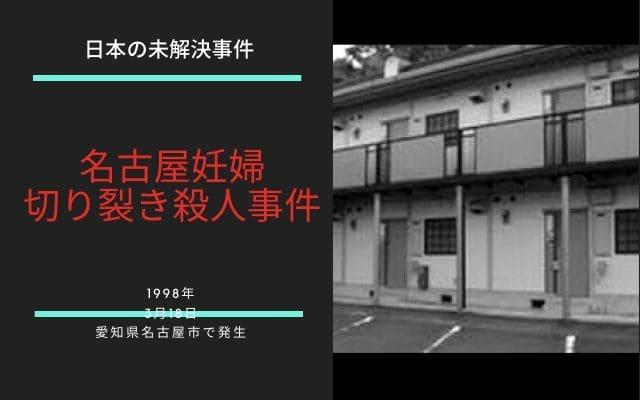名古屋妊婦切り裂き殺人事件の概要