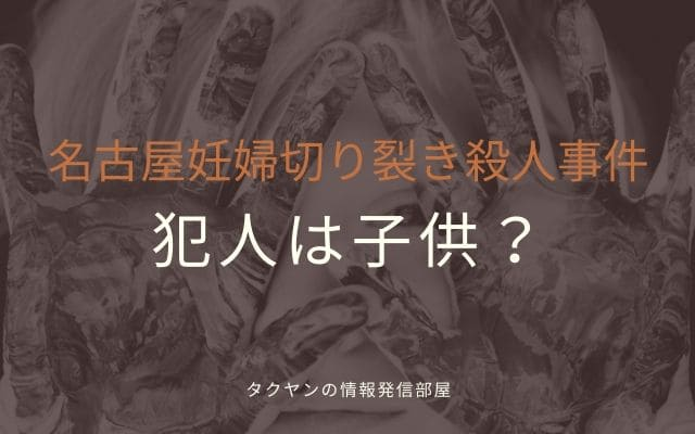 名古屋妊婦切り裂き殺人事件: 犯人はもしかしたら子供?